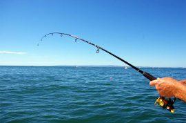 %ce%b5%ce%b3%ce%b3%ce%bb%ce%ad%ce%b6%ce%b9%ce%ba%ce%bf-%cf%88%ce%ac%cf%81%ce%b5%ce%bc%ce%b1-match-fishing-vlog-1